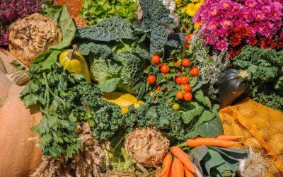 La Genesi dice che dobbiamo essere vegetariani?