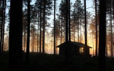 Ritorno alla Genesi: un viaggio nella luce